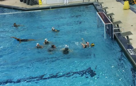 Girls' water polo coaches step down
