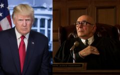 A picture of Donald Trump and Frank Langella portraying Julius Hoffman, judge of the Chicago 7 trial