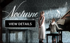 Nocturne is 1 of 4 horror movies produced by Blumhouse Studios. It was directed by Zu Quirke and written by Zu Quirke. Movie Poster of Nocturne