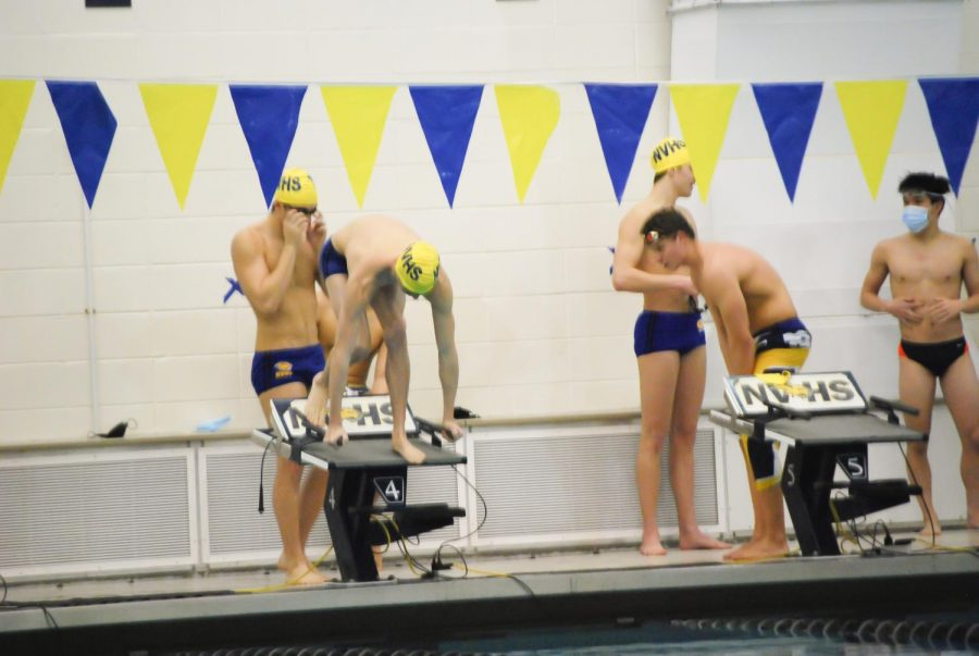 Swimmers prepare to start off the 500 freestyle.